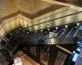Het Traliewerk/de Balustrade van het Glas van Frameless
