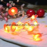 Appleの赤い形のクリスマスのための暖かい白10m 207LEDs銀製ワイヤーLEDストリングライト