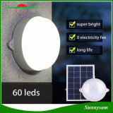 2016 Nouveaux produits 60 LED Remote Control Smart Outdoor Garden Light Lampe murale en plafond solaire Home Home Light