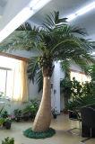 De kunstmatige Palm van de Kokospalm voor het Ornament van de Tuin