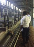 Placcatura acida automatica della cremagliera/placcatura acida del barilotto