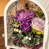 Regalo naturale del fiore di 100% per il compleanno del biglietto di S. Valentino