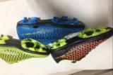 最新のデザイン安い良質のフットボールは蹄鉄を打つスポーツの靴(FF1110-5)に