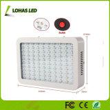 l'alto potere LED di 300W 450W 600W 800W 900W coltiva lo spettro completo chiaro per la serra