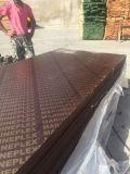 madera contrachapada concreta de la forma de 18m m de la fábrica del profesional de China Linyi