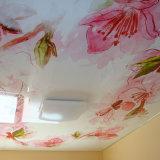 Beau film estampé mou imperméable à l'eau de plafond de PVC de décoration intérieure