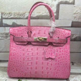Signora famosa Leather Handbags Crocodile Leather Emg4810 di modo della borsa del progettista