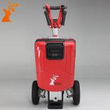 Vespa eléctrica plegable elegante transformable del triciclo