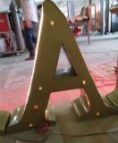 De bouw van KleinhandelsWinkel verlichtte 3D Acryl Plastic Brieven