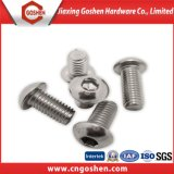 Ss304 Hexagon Socket Button Head Screw ISO7380