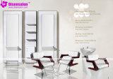 De populaire Stoel Van uitstekende kwaliteit van de Salon van de Kapper van de Spiegel van het Meubilair van de Salon (P2045E)