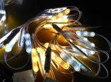 새로운 2835 SMD LED 주입 모듈 빛 방수 IP67