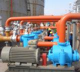 Horizontale Doppelschrauben-Pumpen-Öl-Pumpe