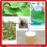 Natürlicher Pflanzenlotos-Blatt-Auszug