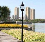 Konkurrenzfähiges Solargarten-Licht des Preis-60W mit Qualität