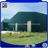 Almacén ligero de la estructura de acero de los edificios de la estructura de acero para la venta
