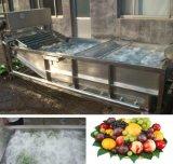 식물성 세탁기 (JX)