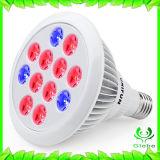O diodo emissor de luz quente da venda 12W cresce o espetro cheio claro de Ce/Rohs para plantas internas Veg e flor