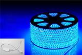 indicatori luminosi blu della decorazione della banda LED di 12V SMD5050 72W 60LEDs IP65 LED