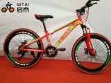 """26 """" Reifen-Fahrrad des Größen-fettes Gummireifen-Gebirgsfahrrad-4.0 von der Fabrik"""