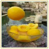 복숭아 Frozon 통조림으로 만들어진 노란 음식