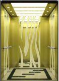 기계 룸 (RLS-241)를 가진 큰 적재 능력 운임 유압 엘리베이터
