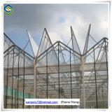 Venlo 유리제 상업적인 온실 Hydroponic 시스템 녹색 집