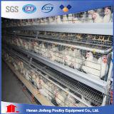 Gaiola da galinha da camada dos pássaros da série 120 da alta qualidade 3