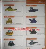 Truck Digger Excavator를 위한 기계 Tool Spare Parts Radiator