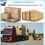 Agente de transporte da carga do oceano do frete de mar de Logística Companhia de China ao Chile