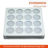La centrale 240X3w de floraison économiseuse d'énergie élèvent la lampe de DEL