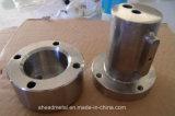 Parti di giro dell'acciaio inossidabile, pezzo meccanico di CNC
