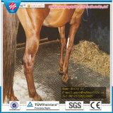 Customerized Kuh-Pferden-Matten-säurebeständiges Pferden-Gummimatten-Pferden-Gummi-Matte