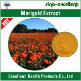 Lutein do extrato da flor do Marigold do Lutein 5%-95%