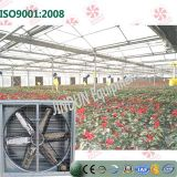 Scarico Fan /Ventilation Fan per Poultry House