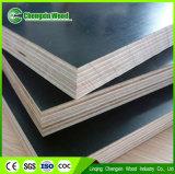triplex van de Bekisting van de Kern van de Eucalyptus van de Populier van de Lijm van de Melamine WBP van 15mm het Concrete