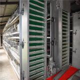 Tipo automatico/semiautomatico sistema di H della gabbia del pollo di strato da Jinfeng