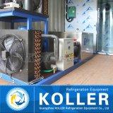 1ton de Machine van het Ijs van het Blok van de container met de Koude Zaal van de Ijskast van Koller