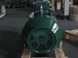 Motor eléctrico trifásico 11kw 15HP de la CA del estándar de GOST