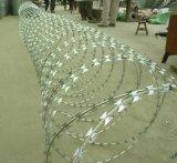 Гальванизированная колючая проволока бритвы стального провода