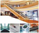 Escalator d'intérieur d'entraînement de Vvvf pour le marché superbe avec la vitesse 0.5m/S