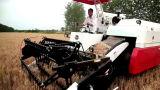 Vietnam voerde de Rijst van de Goede Kwaliteit uit Maaidorser op Verkoop