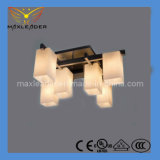 2014 Hot Sale Ceiling Light CE, VDE, RoHS, UL Certification (A-MX121912-6)