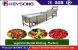 기포 과일 야채 세탁기