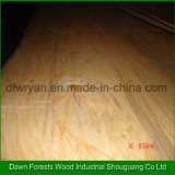 Contreplaqué en bois décoratif en bois de placage en placage de pin