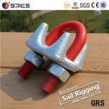 Clip de cuerda resistente galvanizado de alambre