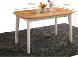 Vector y sillas simples de cena moderno de los muebles de Solidwood fijados