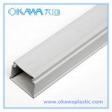 Se spécialiser dans OEM Plastic Extrusion Profile de Manufacturing