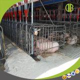 고품질 최신 복각 직류 전기를 통한 임신 기간 축사를 사용하는 돼지 농장