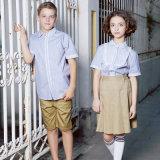カスタマイズされた学生服の青いストリップのワイシャツ卸しで